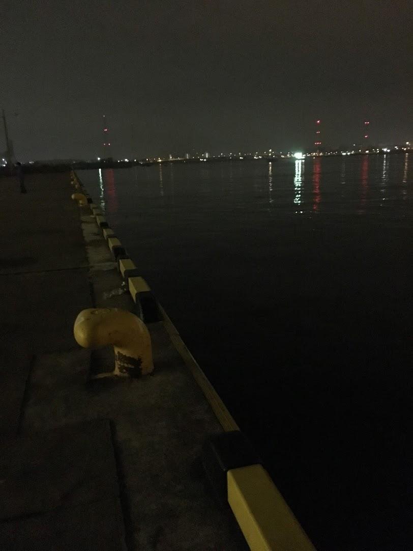 鶴浜緑地1